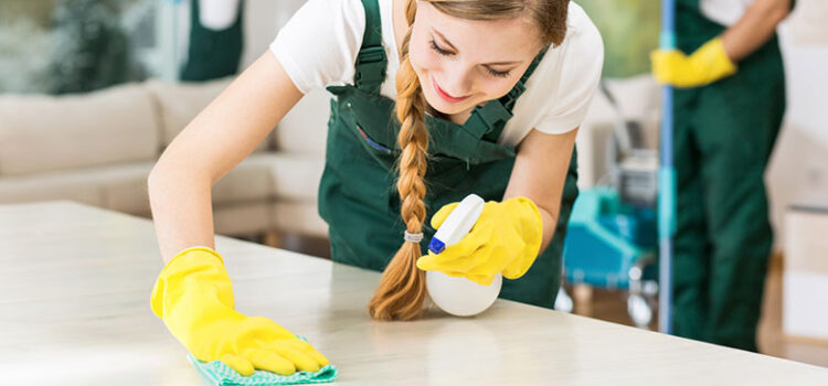 Professional Cleaning Services NYC – Get A Clean Environment To Spend Your Time