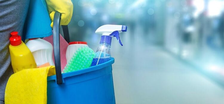 Immaculate Cleaning Company Services – Cleanliness & Wellbeing Of Family