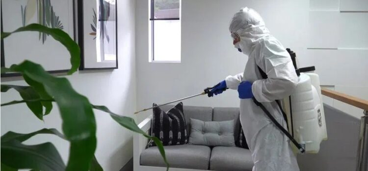 Cleaning Services – Cleaning Administrations With Reason For Adequacy